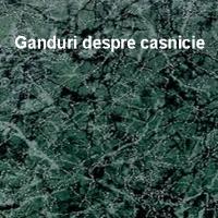 CUGETARI DESPRE CASNICIE...