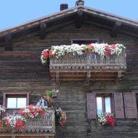 Balcoane cu flori