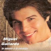 MIGUEL GALLARDO.pps