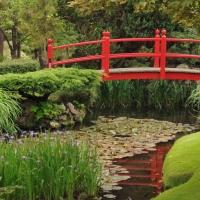 Principiile zen si gradina japoneza