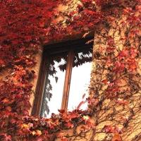 balcoane si ferestre
