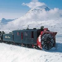 Alaska_pe_TREN