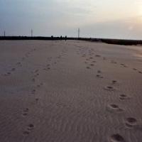 urme pe nisip