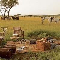 Africa splendida