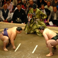 Old sports - sumo