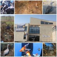 Tulcea -Acvariul-Centrul Ecoturistic