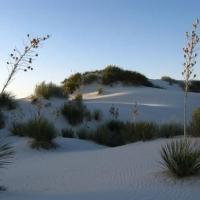 Desertul de portelan