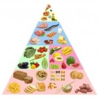Piramida alimentara a copiilor