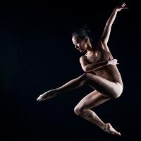 Din arta baletului rus.