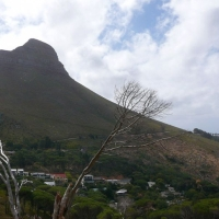 africa de sud, cape town7