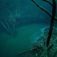 Viata de sub ape