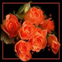 Trandafiri si femei