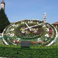 Floral clocks
