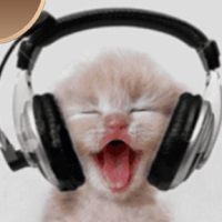 Pisici si...muzica