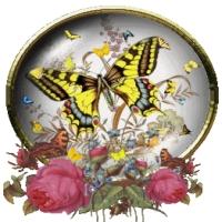 Flori si fluturi 4