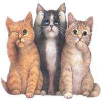 pisici animate