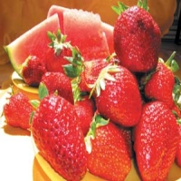 Antioxidantii