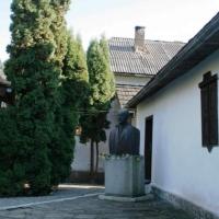 Casele memoriale L.Rebreanu si G.Cosbuc
