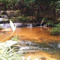 NATIVE PEOPLE AMAZON RAINFOREST YANOMAMI