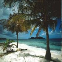 Insulele private ale vedetelor