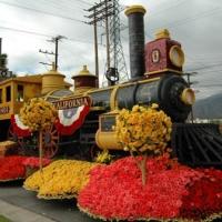 festivalul de flori