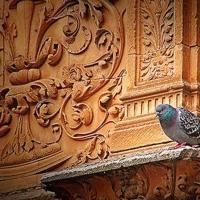 Salamanca - Spania