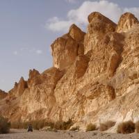 Desert - Israel