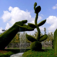 Chine sculpture de plantes