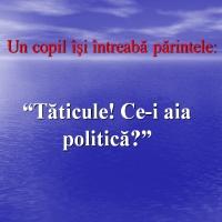 politica 2