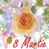8 Martie infloritor