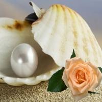 Perla si Trandafirul