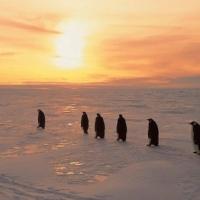 L'antarctica