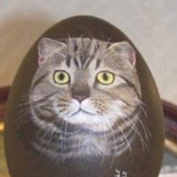 Ouă, Animale, Peisaje & Flori.
