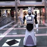 Robotul majordom