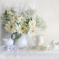 Poezia florilor_intr-o colectie de Luisa Gelts