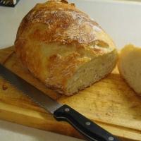 Daniel Drugea-paine de casa neframîntata