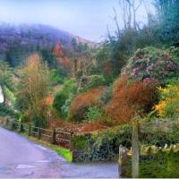 Anglia rurala