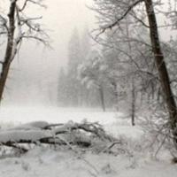 Ceaţă. 02