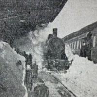 iarna _ feb.1954