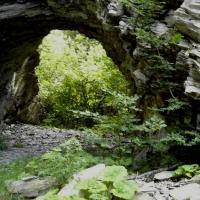 Cheile Tisitei-rezervatie naturala