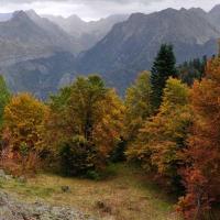 Le Pyrenees en automne