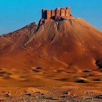 FOTOS - IMAGINI DIN DESERT