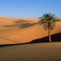 Le désert des Touaregs