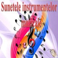 Sunetele instrumentelor muzicale -V1