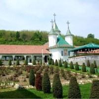 Mănăstirea Moreni-Deleni. Jud. Vaslui.