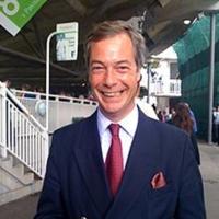 Nigel Farage, Europarlamentarul Ne-înregimentat.
