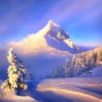 3 minute de iarnă