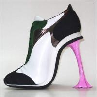 pantofi de dama?