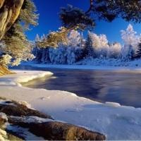 Urme pe zăpadă