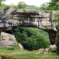 Poduri naturale